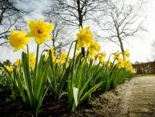 De lente komt eraan; zonnig en droog weer