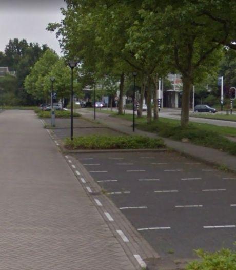Wezenbeek: 'Hef betaald parkeren op lege vakken aan de Leede op'