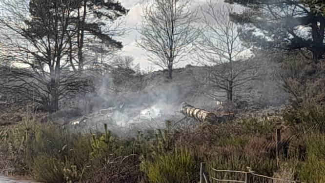 Twee keer brand in Mechelse heide in twee dagen