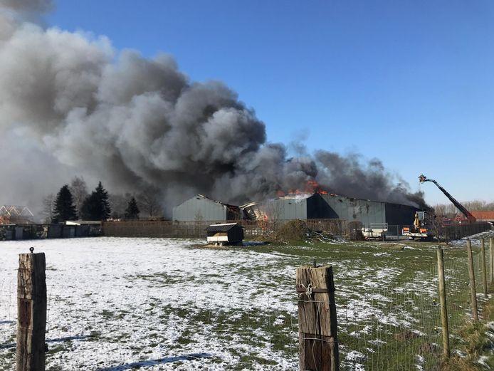 Heel de houtzagerij is afgebrand.