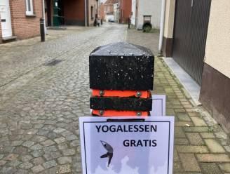 """Bordjes met 'gratis yogalessen' in Rivierstraat: """"Ruim het gevoeg van je hond op"""""""