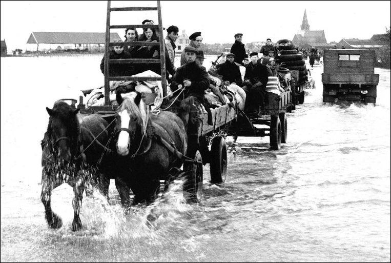 Foto van de watersnoodramp (1953) Beeld ANP