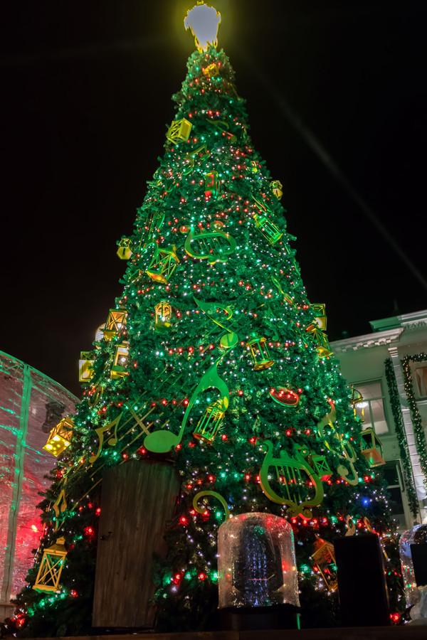 De kerstboom zoals die vorig jaar op de Grote Markt stond.