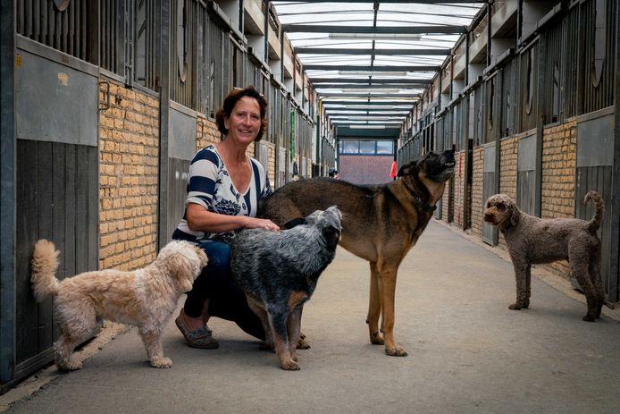 Thérèse Nas in de voormalige paardenstal waar een dagopvang voor honden moet komen.