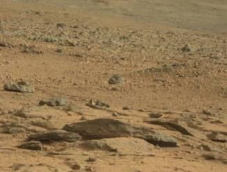 Botst de Curiosity-jeep hier op een Marsrat?