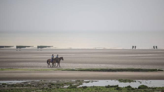 """Des associations dénoncent un """"vol systématisé"""" des affaires des migrants à  Calais"""