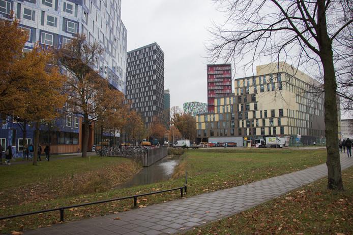 Utrecht Science Park, een plek waar veel hoogopgeleiden samenkomen.