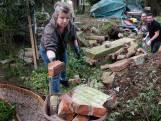 Valwind krijgt inwoners niet op de knieën: verbroedering en saamhorigheid helpen Leersum weer overeind