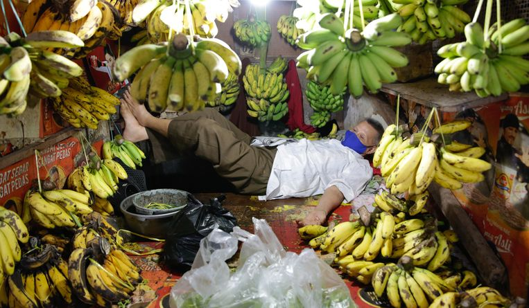 Een fruitverkoper in de Indonesische hoofdstad Jakarta doezelt even in tussen zijn bananen. De prijzen van deze vruchten zijn, net als die van de meeste andere voedselproducten op de wereldmarkt, de afgelopen maanden gestegen. Suiker en plantaardige olie werden het duurst.  Beeld EPA