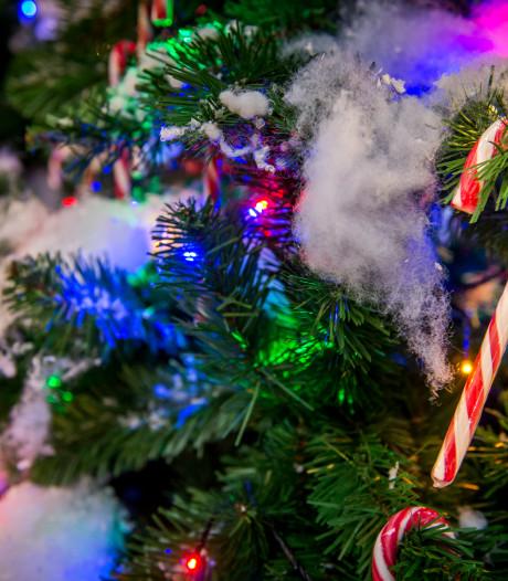 Ze zijn er vroeg bij: volop kerst in tuincentrum Zevenhuizen