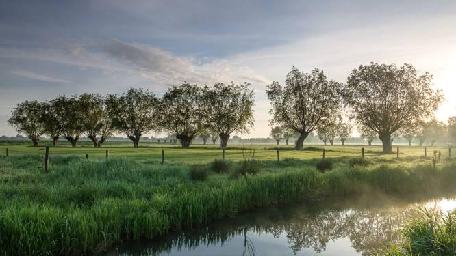 Samenscholing in afgelegen natuurgebied in Nevele middenin eerste golf: overtreders krijgen 400 euro boete
