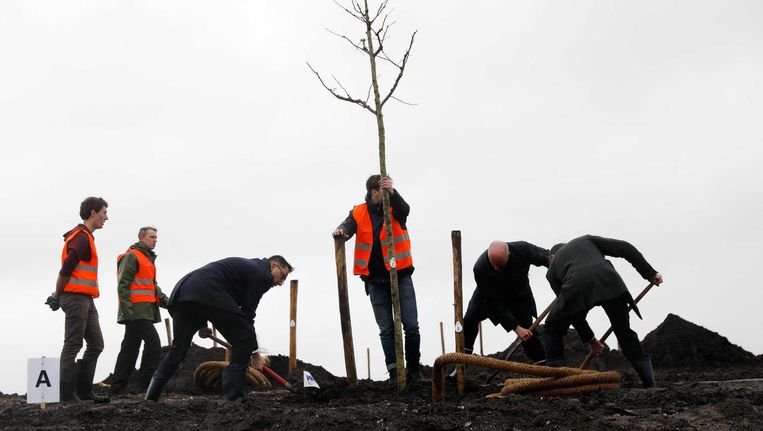 Ambassadeur van Australie, Brett Mason (l) plant een boom voor het herinneringsbos Beeld anp