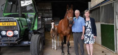 Dina en Fons zijn overtuigd van de kracht van paardenmelk: 'Dit werk is prachtig om te doen'