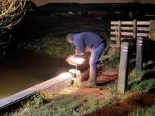 Dit is waarom sloten nu 's nachts extra vol water lopen