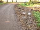 De Oosters in Oudheusden, net buiten het dorp. De bermen zijn slecht, zeker in de wintermaanden. En autoverkeer rijdt vaak veel te hard. Dat levert gevaarlijke situaties op voor onder meer wandelaars en mensen die hun hond uitlaten.