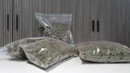 Cannabis en cocaïne in auto ontdekt