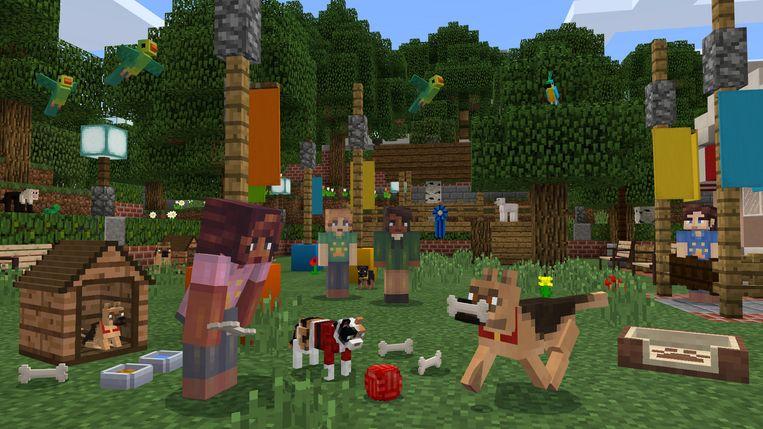 Minecraft Beeld Microsoft