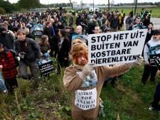 Dierenorganisaties in actie tegen proeven met apen in Rijswijk