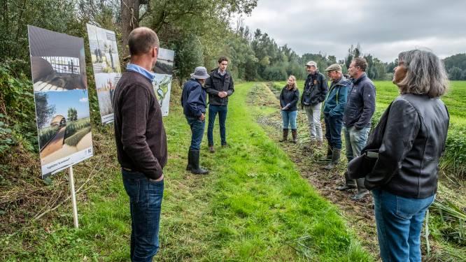 Ruimte voor rietmoeras in de Ooijse Graaf, maar eerst 6 jaar ontzanden