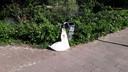 Aan de prullenbak in het Wilhelminapark is een extra afvalzak gehangen. Veel afvalbakken die in de buurt van broodjeszaken, supermarkten en scholen staan, hebben zo'n extra afvalzak gekregen.