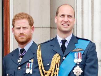 William en Harry zullen aparte speeches geven tijdens onthulling van Diana-standbeeld
