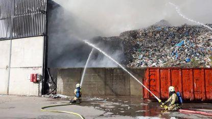 Brandje bij Containers Maes zorgt voor dikke rookpluim