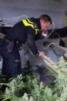 Twee mannen (33, 37) aangehouden in Zevenaar na vondst 4300 hennepstekken