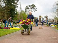 Kruiwagens vol bloemen voor Russisch Ereveld, elk graf voorzien van een bloemetje