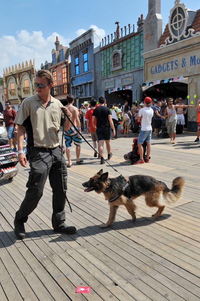 Controle met een drugshond op Tomorrowland. Beeld Photo News