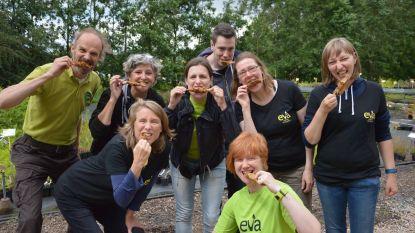 Langste Veggietafel zonder vlees: vzw Eva organiseert later zonder samenwerking stad