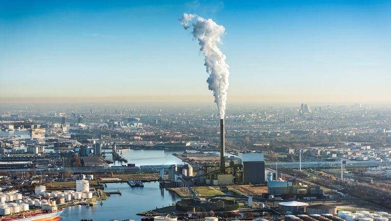 Het Westelijk Havengebied is zaterdag het terrein van milieuactivisten Beeld anp