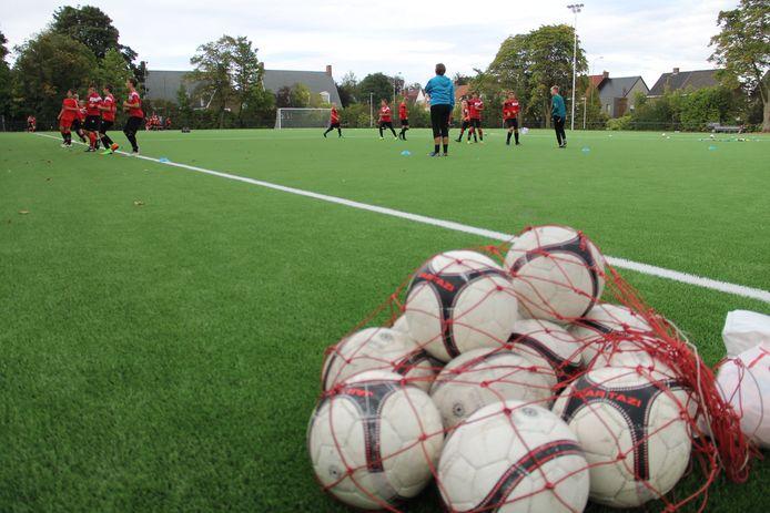 De Skyline Arena van Mandel United is te klein voor de sportieve ambities die de Franse investeerders voorop stellen.