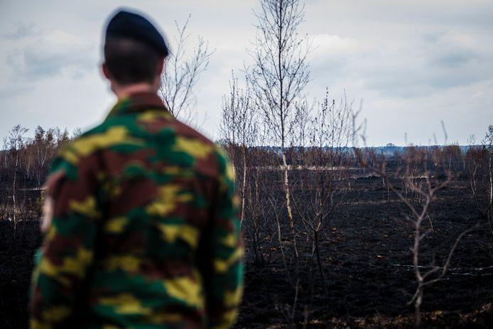 Een militair werpt een blik over het zwartgeblakerd terrein van natuurgebied en militair domein Groot Schietveld na de brand vorige week vrijdag