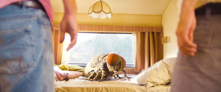 In de wilde surrealistische roadmovie Mandibules van de Franse regisseur Quentin Dupieux, speelt een gigantische vlieg een hoofdrol. Beeld