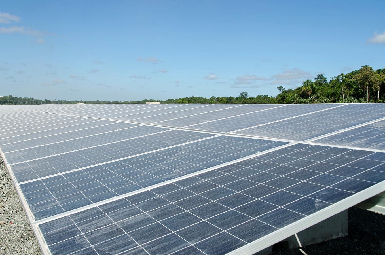 Het zonnepark wordt echt van de inwoners, zegt bestuursvoorzitter Henk Muis van de Eigen Wijkse Energie Coöperatie (EWEC)
