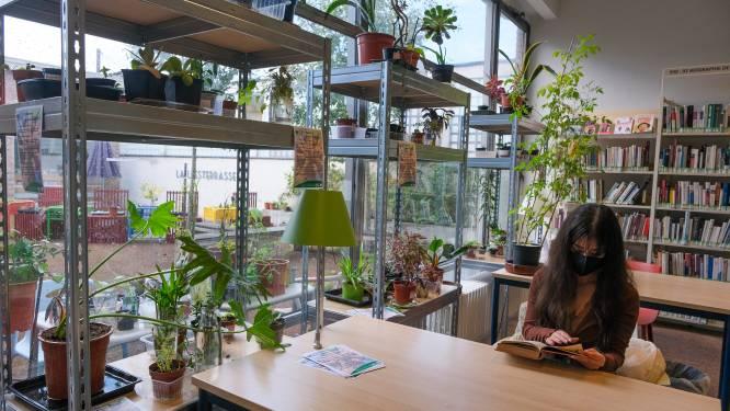"""In Jetse bibs kan je vanaf nu planten adopteren: """"Op tien dagen vlogen er al 60 planten de deur uit"""""""