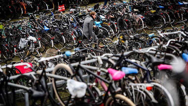 Fietsen in Amsterdam Beeld anp