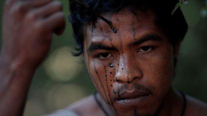 Bekende beschermer Amazonewoud vermoord door illegale houtkappers