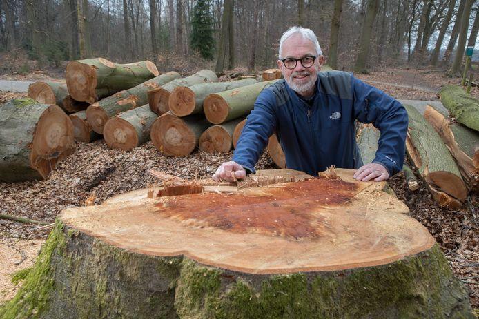 Anton Dekker is bomenexpert. Hij werkte 46 jaar in dienst van de gemeente Apeldoorn en is nu betrokken bij de Bomenstichting.