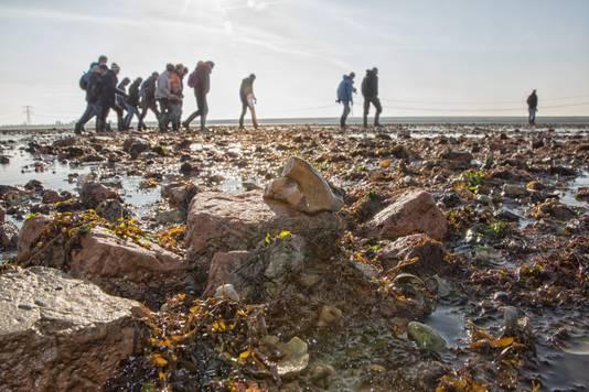 Excursie verdronken dorp Nieuwlande