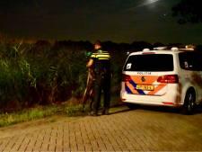 Vermoedelijke drugsdealer steekt A58 over en duikt maïsveld in om aan politie te ontkomen, zonder succes