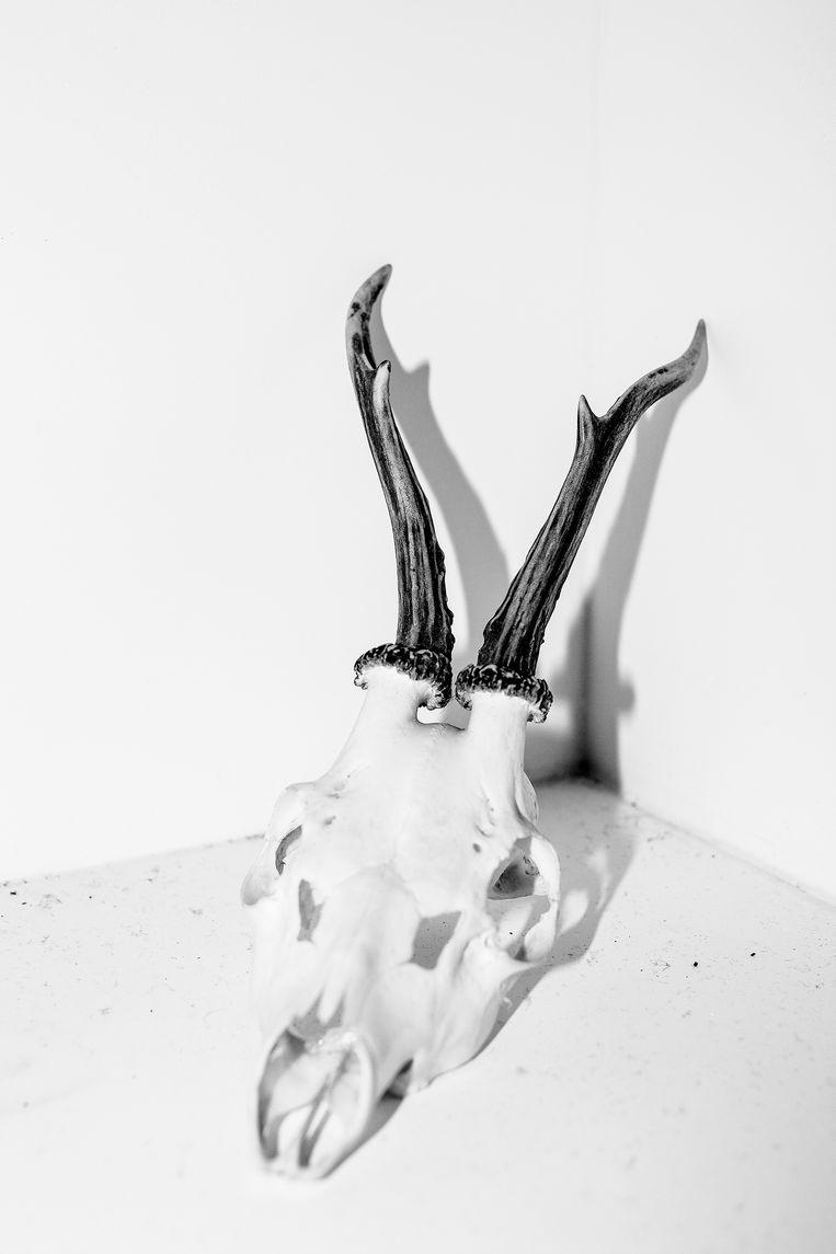 Shrinky Recipe (2019), uit de serie On Rape Beeld Laia Abril & Galerie Les Filles du Calvaire.