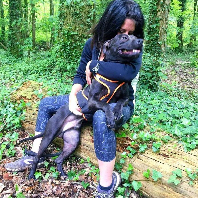 De vrouw die een van haar eigen honden uitliet, werd kennelijk aangevallen door een troep honden en waarschijnlijk doodgebeten door meerdere dieren.