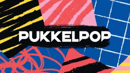 Pukkelpop kondigt 19 nieuwe namen aan, waaronder A Day To Remember en Gossip