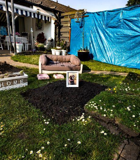 Hond ouder echtpaar dood na trap van boze buurman, politie kan er niks aan doen bij gebrek aan bewijs