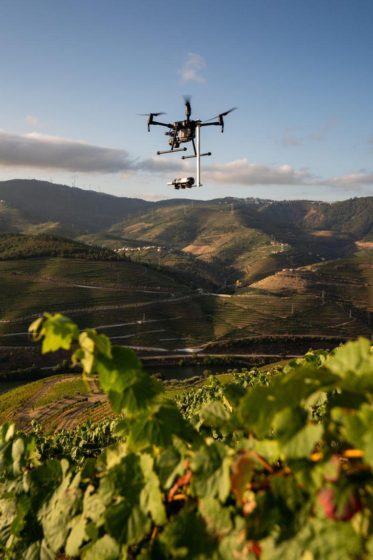 Drone met fles wijn eronder, campagne voor wijnmaker, 2019. Beeld Kesselskramer