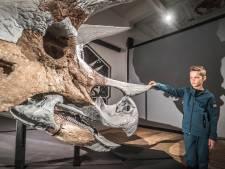 Vol belangstelling bekijken dinofans de beroemde schedel van een triceratops in Science Centre Delft