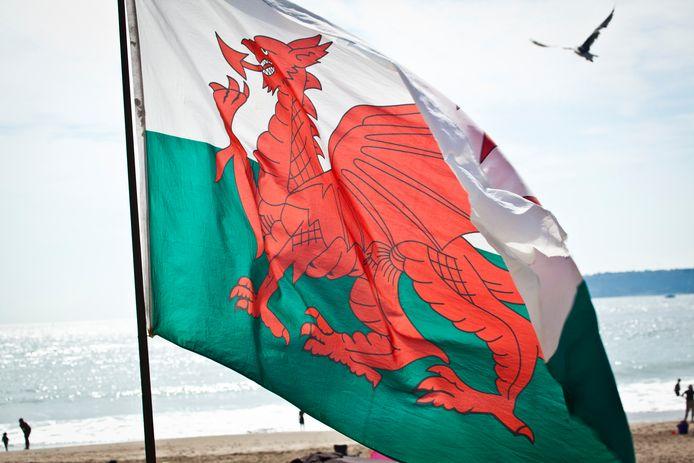 De Welshe vlag met de rode draak, vooralsnog afgebeeld zonder uiterlijk kenmerk van zijn mannelijkheid.