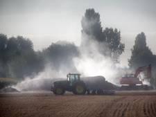 'Bekendste mestfraudeur van Nederland' zegt van niets te weten