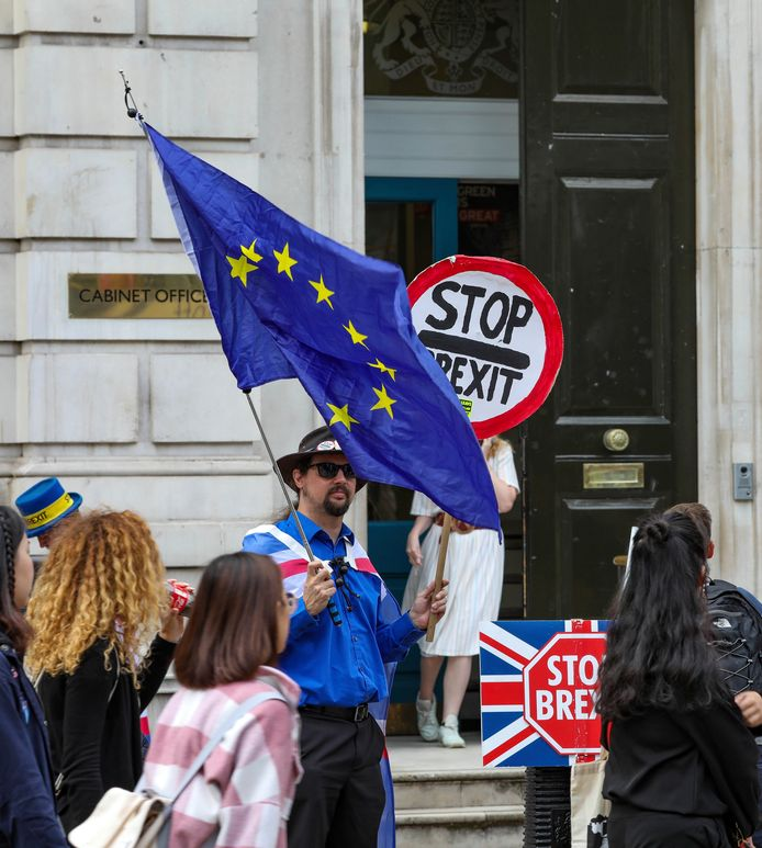 Anti-brexitdemonstranten bij de Cabinet Office in Whitehall in London.